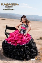Ragazza Quinceanera Dresses Houston