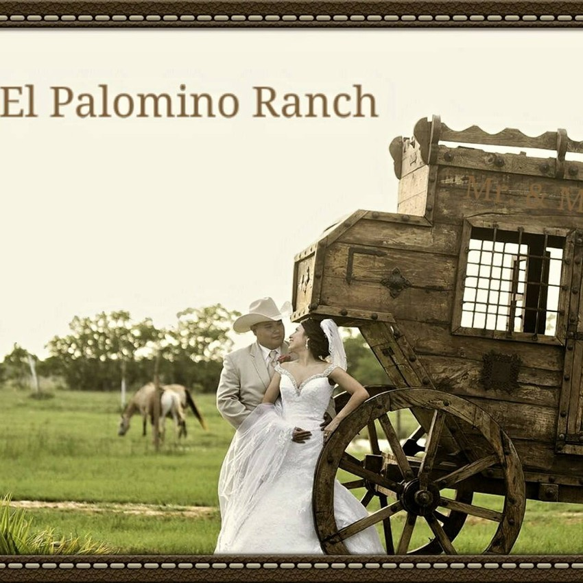 palomino-ranch2016-
